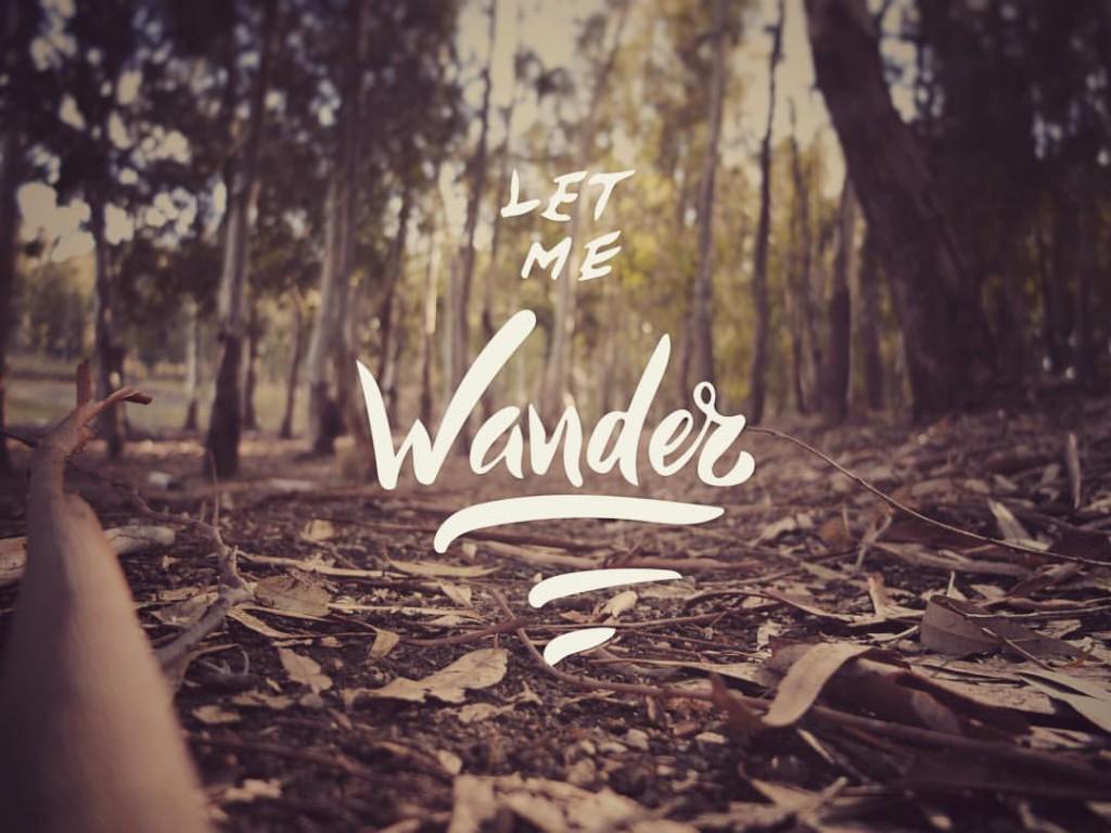 Let me wander